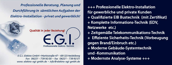 Egi-Elektrotechnik EDV Heidelberg