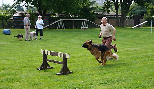 Hundesport bedeutet auch Fitness für den Hundeführer