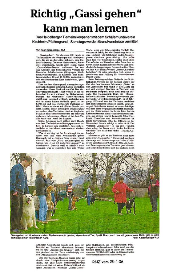 Artikel Gassigehen mit Tierheimhunden